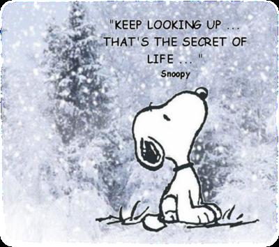 Snoopy keep looking up